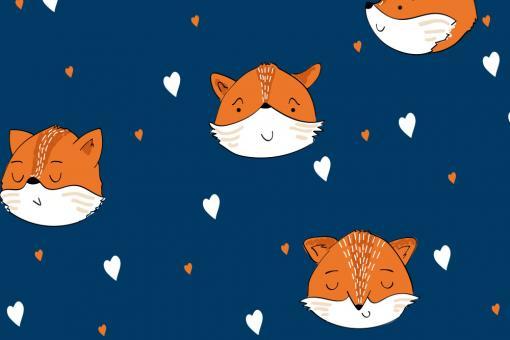 Softshell Premium - Liebe Füchse Nachtblau
