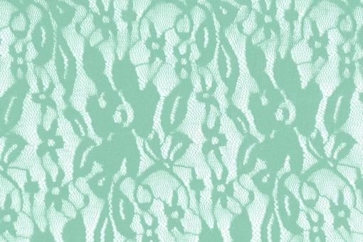 Wäsche-Spitze Stretch - Flora Mint
