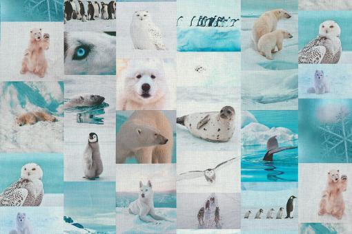 Dekostoff Fotoprint - Am Gletscher